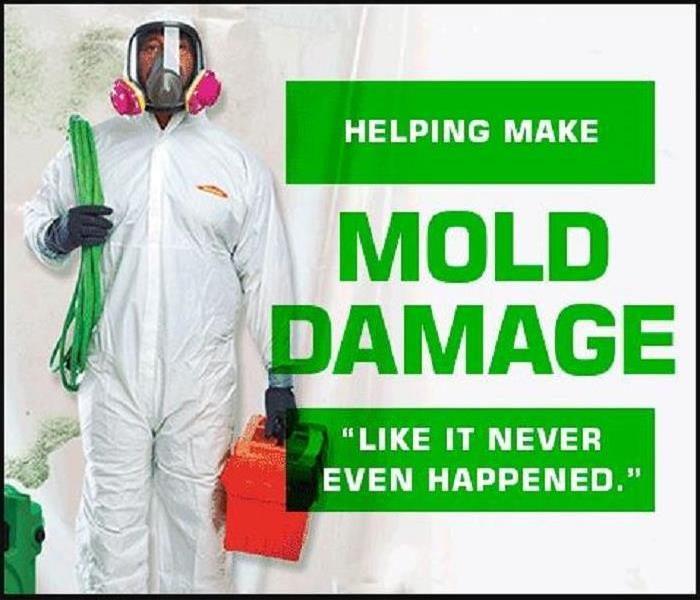Mold Remediation Five Easy Facts About Mold
