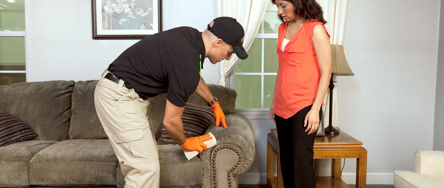 Cartersville, GA carpet upholstery cleaning